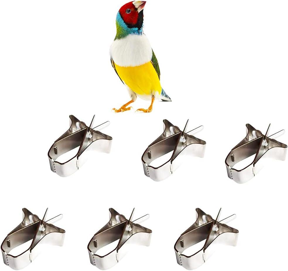 6 Pcs Bird Food Holder Parrot Cage Seed Feeder Stainless Steel Vegetable Fruit Clip for Bird Cockatiel Parrot Hamster