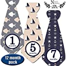 Nautical Tie Baby Monthly Stickers - Shower Gift or Scrapbook Photo Keepsake