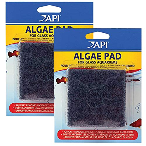 API HAND HELD ALGAE PAD For Glass Aquariums 2-Count Container
