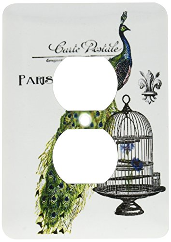 3dRose lsp_178821_6 Paris Peacock on Bird Cage Light Switch Cover ()