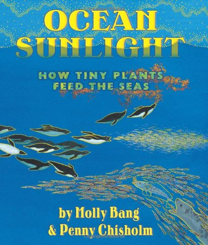 Download Ocean Sunlight: How Tiny Plants Feed the Seas (Sunlight Series) pdf