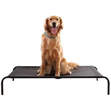 GDDYQ Cama de Mascotas elevada Camping portátil elevable Cama de Perro, Marco de Metal Impermeable y húmedo Adecuado para Interior/Exterior,S: Amazon.es: ...