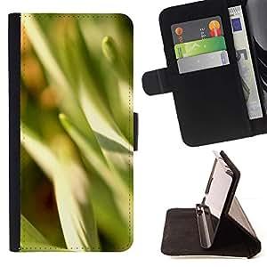 Momo Phone Case / Flip Funda de Cuero Case Cover - Naturaleza Hermosa Forrest Verde 15 - Samsung Galaxy S5 V SM-G900