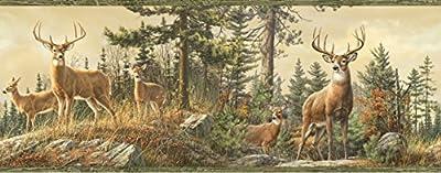 Chesapeake HTM48461B Fern Green Whitetail Portrait Wallpaper Border