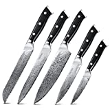 Damascus Knife Set Block 5pcs, Japanese VG10 67 Layers Stainless Steel Kitchen Knives, G10 Ergonomic Handle, Professional Sharp High Carbon, Vitchen