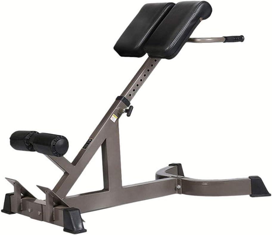 CHS@ ローマの椅子ホーム腰椎筋力トレーニングジム専門フィットネス機器多機能、マットの高さ8ファイルは左右調整ながら調整できます