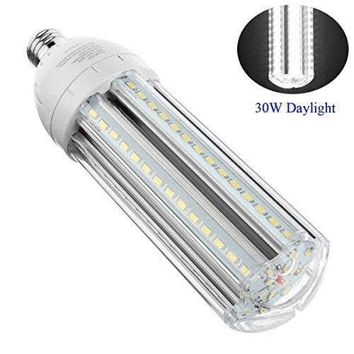 Super Bright Led Light Bulb - Zoneled LED Light Bulb Daylight 30W 3300LM Super Bright LED Bulbs 200 Watt Incandescent Bulb Equivalent for Garage Porch Backyard Patio Basement E26
