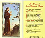 St. Francis Prayer Holy Card (800-040)
