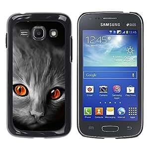 Be Good Phone Accessory // Dura Cáscara cubierta Protectora Caso Carcasa Funda de Protección para Samsung Galaxy Ace 3 GT-S7270 GT-S7275 GT-S7272 // Cat Orange Eyes Grey Face Red Fir