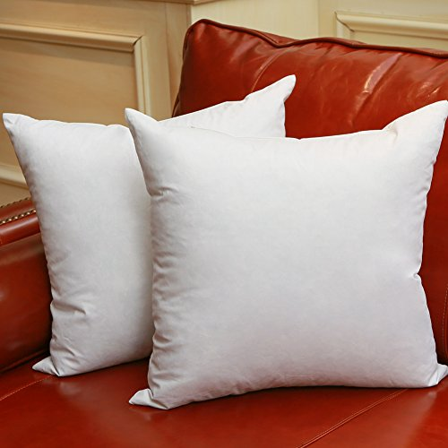 Set of 2 18X18 Square Decorative Down & Feather Throw Pillow