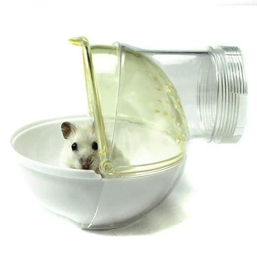 Amazon.com: POPETPOP Hamster Sand Bath Ball-2 Pack ...