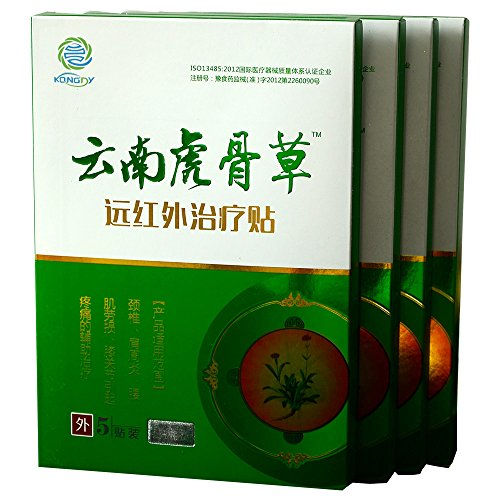 KONGDY Yunnan Tiger Bone Pain Relief Patch - Traditional Hot Capsicum Patch 5 Counts/Box