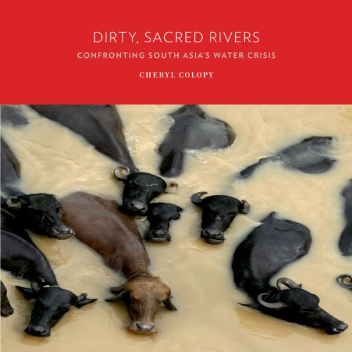 Dirty, Sacred Rivers: Confronting South Asia's Water Crisis
