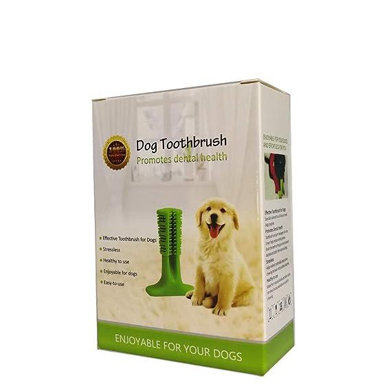 XIN-JI Cepillo de Dientes Perro - Palo Juguete para Masticar - Limpiador Dientes Perros - Perros - Regalo para el Amante de Las Mascotas (Verde): Amazon.es: ...