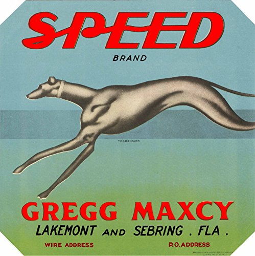 A SLICE IN TIME Lakemont & Sebring, Florida - Vintage Speed Greyhound Dog Orange Citrus Fruit Crate Box Label Travel Advertising Art Print. Label Print Measures 10 x 10 inches