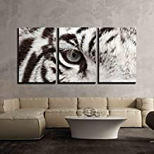 """wall26 - 3 Piece Canvas Wall Art - Close Up of White Bengal Tiger Eye - Modern Home Decor Stretched and Framed Ready to Hang - 16""""x24""""x3 Panels"""