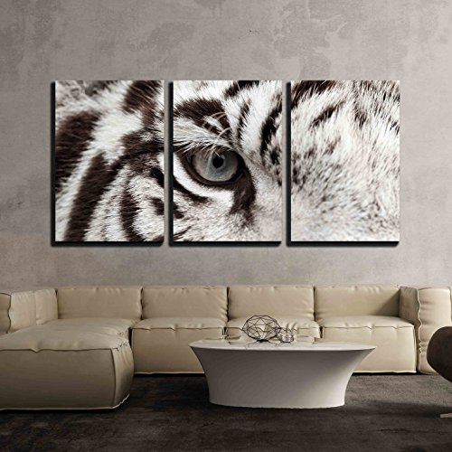 wall26 - 3 Piece Canvas Wall Art - Close Up of White Bengal Tiger Eye - Modern Home Decor Stretched and Framed Ready to Hang - 16