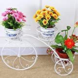 GIG Cycle Style Stand with Out Metal Pot: Large Tricycle,Planter Stand, Stand for Pots, Pot Stand for Plants, Pot Stand for Plants in Balcony (White)