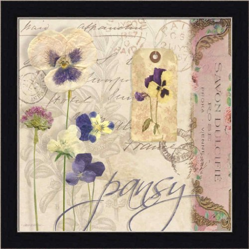 Pansy Flower Pictures (Pansy by Carol Robinson Vintage Pressed Flowers 13.5x13.5 Framed Art Print Picture Wall Decor)