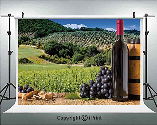 - Wine Photography Backdrops Idyllic Tuscany Country Landscape Agriculture Harvest Grape Plantation Decorative,Birthday Party Background Customized Microfiber Photo Studio Props,5x3ft,Black Green Light