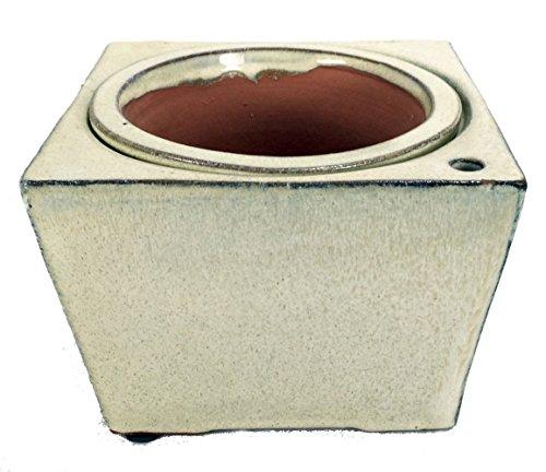 Grape Square Pot (Self Watering Glazed Square Ceramic Pot - Beige - 6