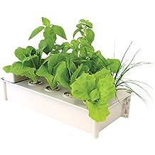 Hydrofarm GCSB Salad Box Hydroponic Salad Garden Kit
