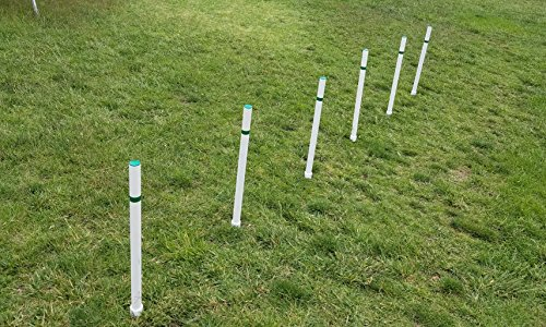 Weave Poles - Triple A Dogs Dog Agility Training Weave Poles stake type