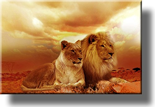 Lion and Lioness Picture on Stretched Canvas