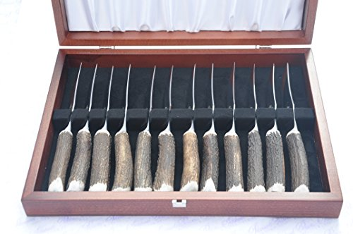Twelve Cased Genuine Stag Horn/Antler Handle Steak Knife Made In Sheffield England Stamped Sheffield England