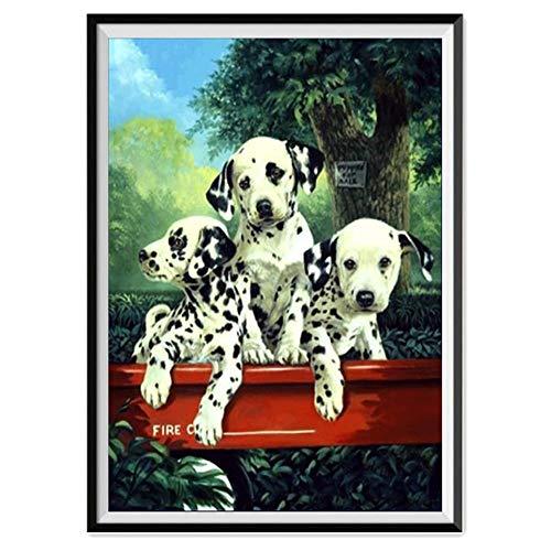 Embroidery Dalmatian (5D Diamond Painting Rhinestone Dalmatian Puppy Embroidery Wallpaper DIY Wall Sticker by Number Kits Full Drill Kits Full Drill Cross Stitch Arts 30X40cm)