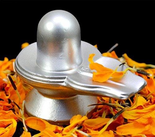Image result for Pard Shivalinga,nari