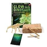 Glow in the dark Dinosaur Excavation Kit