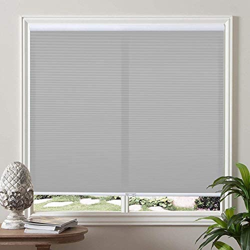 PASSENGER PIGEON Cordless Pleated Window Blind