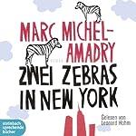 Zwei Zebras in New York   Marc Michel-Amadry