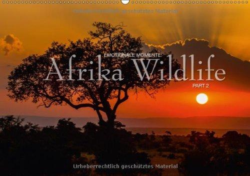 Emotionale Momente: Afrika Wildlife Part 2 (Wandkalender 2013 DIN A3 quer): Dramatische und zugleich wunderschöne Bilder von Afrikas Tierleben. (Monatskalender, 14 Seiten)