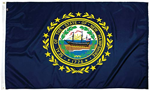 FlagSource New Hampshire Nylon State Flag, Made in The USA, 3x5'