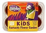 Veggie Tales Greenhouse Garden Larry Boy Fantastic Flower Kit
