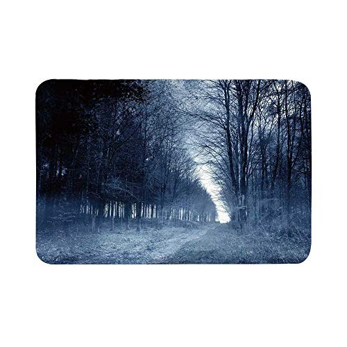 C COABALLA Halloween Durable Door Mat,Ghostly Haunted Forest Image Bleak Gloomy Misty Nature Landscape Decorative for Living Room,17.7