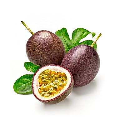 Passiflora incarnata Maypop 100pcs/bag - Beautiful Passion Vine Fruit Flower Seeds