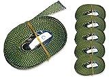 6 Spanngurte Zurrgurte 250kg 2.5m 4m 5m 6m mit Klemmschloss Schnellspannung (6m, oliv)