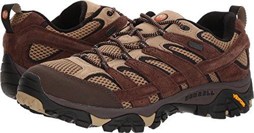 Merrell Mens Moab 2 Waterproof Hiking Shoe Bracken XjTNdw3az