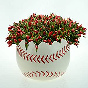 """Large 6"""" Diameter Baseball Shaped Planter Can be Used for Container/Candy Dish Or Centerpiece"""