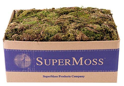 supermoss-22160-sheet-moss-mini-shredded-dried-fresh-green-3lbs