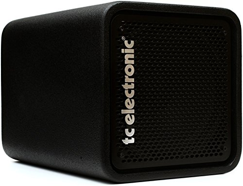TC Electronic RS 112 Bass Cabinet with 12 Woofer and 1 Tweeter Rated 250W at 8 Ohms by TC Electronic