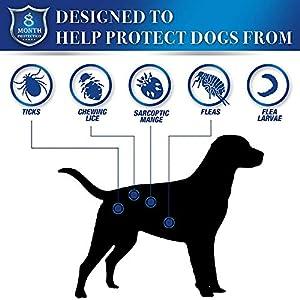 SAKURAM Collar Antiparasitos Perros Garrapatas y Mosquitos Gatos contra Pulgas Tamaño Ajustable e Impermeable para Mascota Pequeño Mediano Grandes
