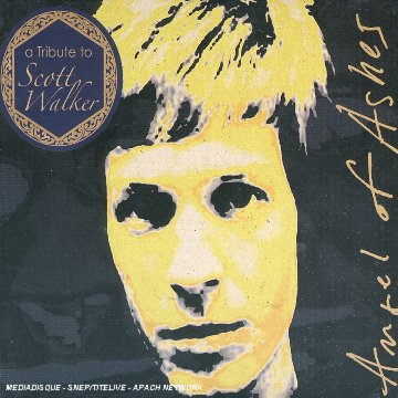Angel OFFicial store of Ashes-Tribute Popularity Scott Walker to