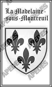 La Madelaine-Sous-Montreuil France - Adhesivo decorativo para coche, diseño de escudo de Francia, 7,6 x 12,7 cm
