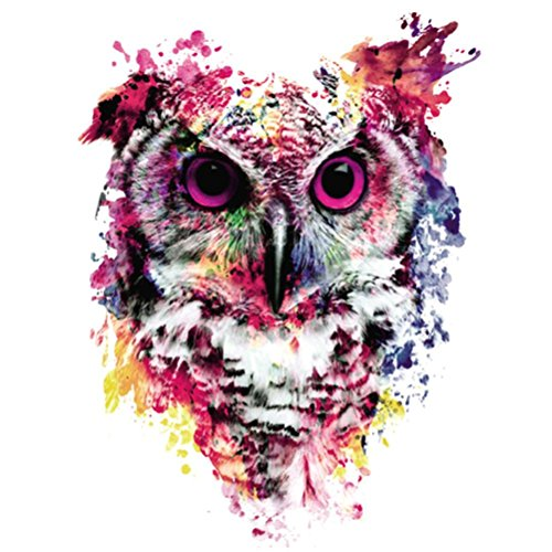 5D DIY Diamond Painting Kit for Adults - Franterd Diamond Cross Stitch By Number -Crystals Embroidery with Diamonds for Home Wall Decor - Franterd Lovely Animal Owl -