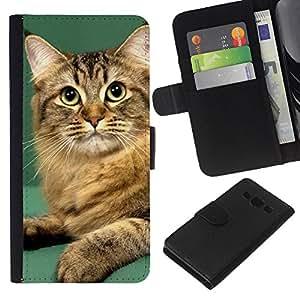 Orange British Curl Bobtail Manx Cat - la tarjeta de Crédito Slots PU Funda de cuero Monedero caso cubierta de piel Samsung Galaxy A3