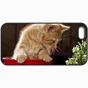 Fashion Unique Design Protective Cellphone Back Cover Case For iPhone 5 5S Case Cat View Background Black